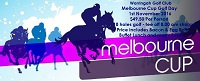 Melbourne Cup Day 2016 Website Banner - Copy